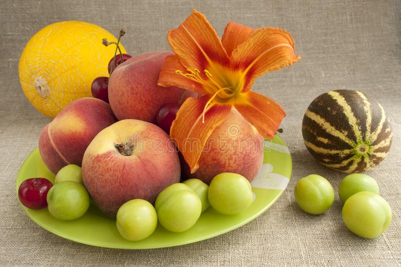 Download Fruit platter stock photo. Image of dessert, green, juicy - 20155758