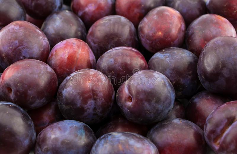 Fruit plums. Texture, background, isolated, close-up stock image