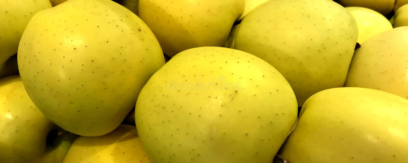 Fruit, pommes, variété golden delicious image stock