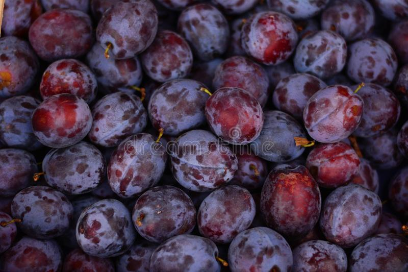 Fruit, Produce, Food, Local Food Free Public Domain Cc0 Image