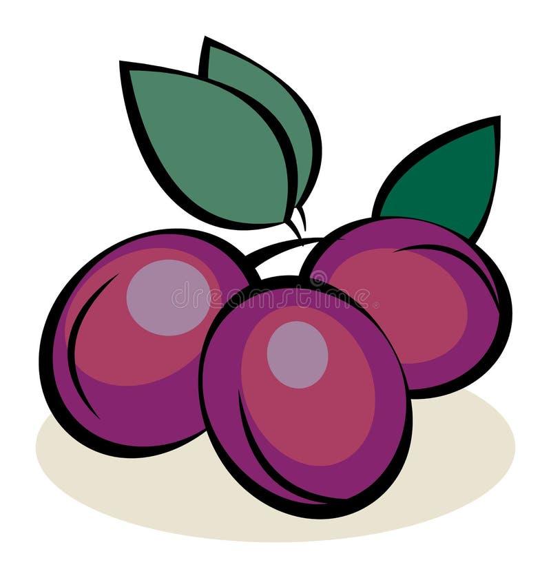 Fruit, Pruimen stock illustratie