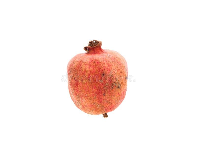 Fruit putréfié de grenade photographie stock libre de droits