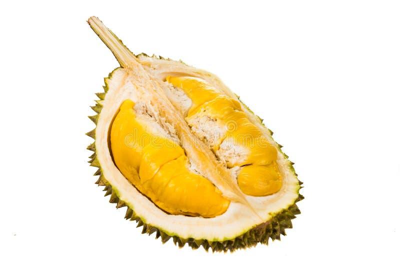 Fruit récemment récolté de durian avec la chair molle jaune d'or aromatique et délicieuse image libre de droits