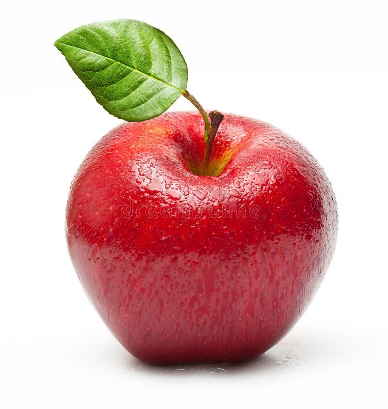 Fruit rouge de pomme avec des baisses de l'eau photos libres de droits