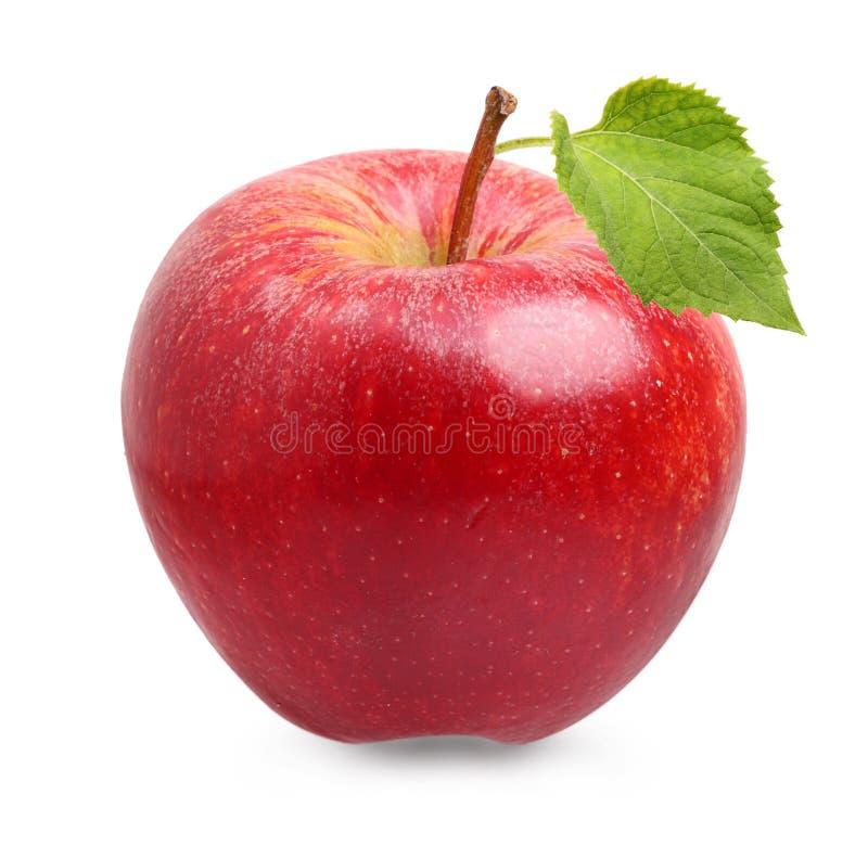 Fruit rouge de pomme avec la feuille photographie stock libre de droits