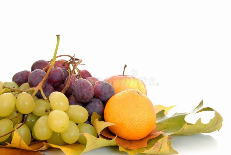 Fruit saisonnier frais photo stock