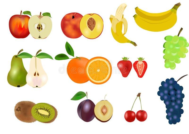 Fruit set vector illustration