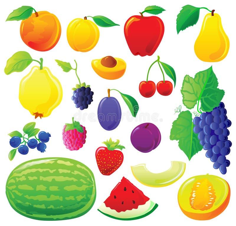 Fruit set stock illustration