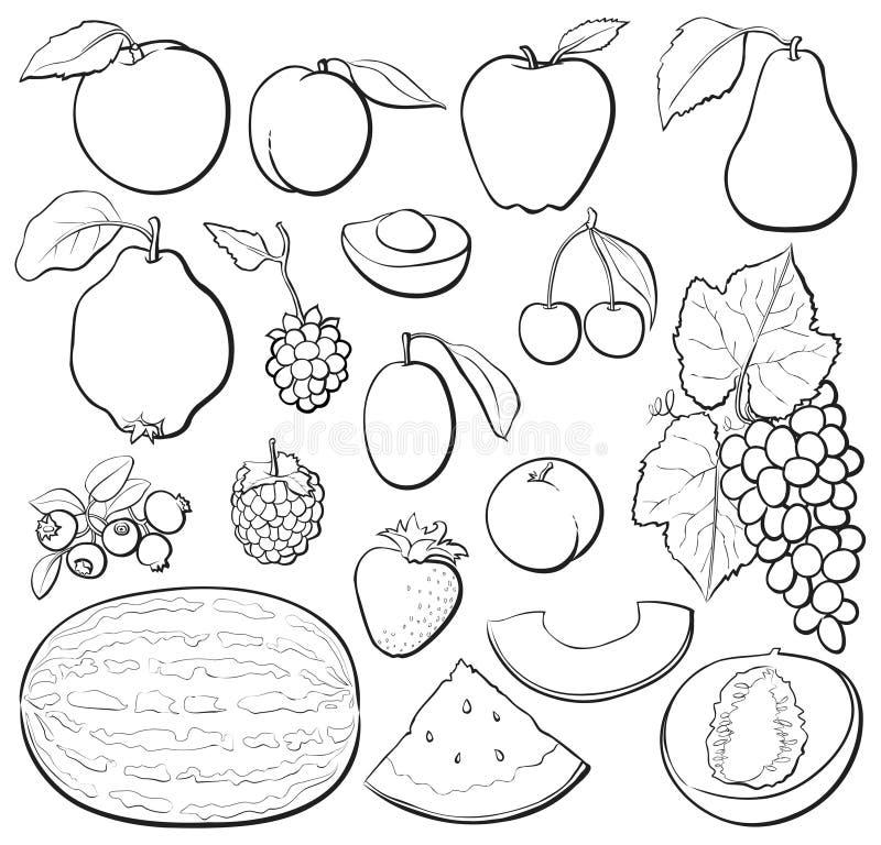Fruit set b&w vector illustration