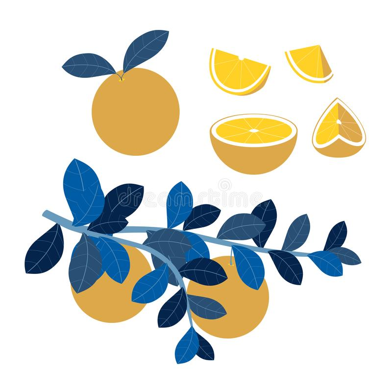 Fruit set, orange slices. Vitamins, proper nutrition. In minimalist style Cartoon flat Vector. Illustration royalty free illustration