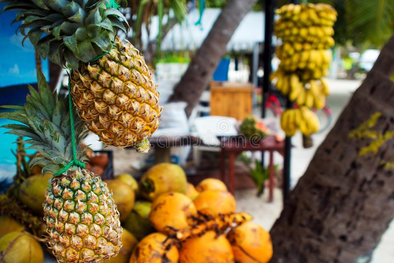 Fruit shop on a maldivian island, outdoor. Fresh pineapple and another tropical fruits royalty free stock images