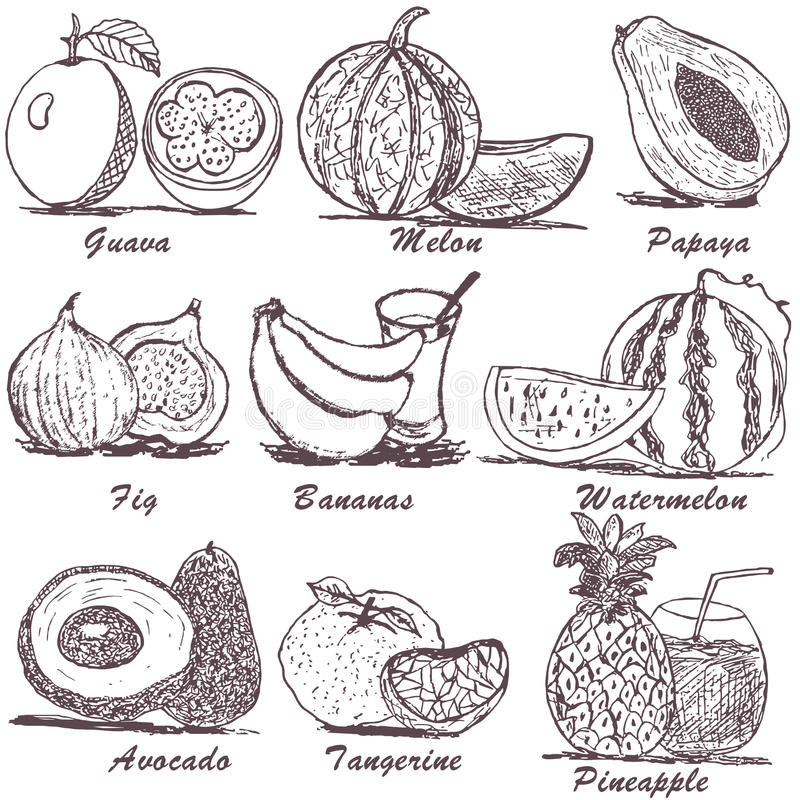 Free Fruit Sketch 2 Royalty Free Stock Images - 34836409