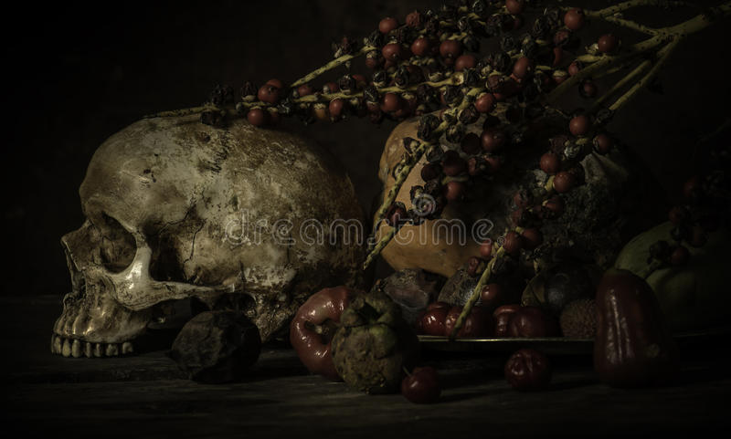 Fruit and skull , still life style. And art royalty free stock photography