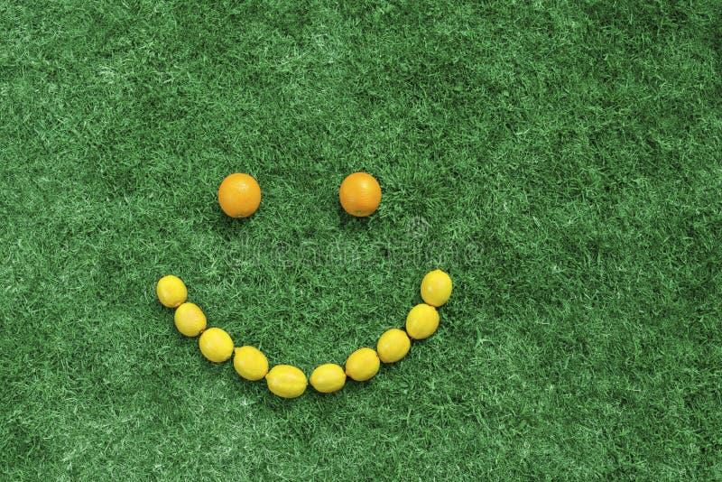 Download Fruit smile stock photo. Image of green, smile, shape - 26370256