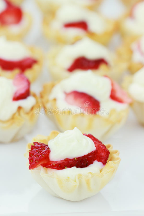 Download Fruit Tarts stock photo. Image of dish, carbs, pastries - 16452612