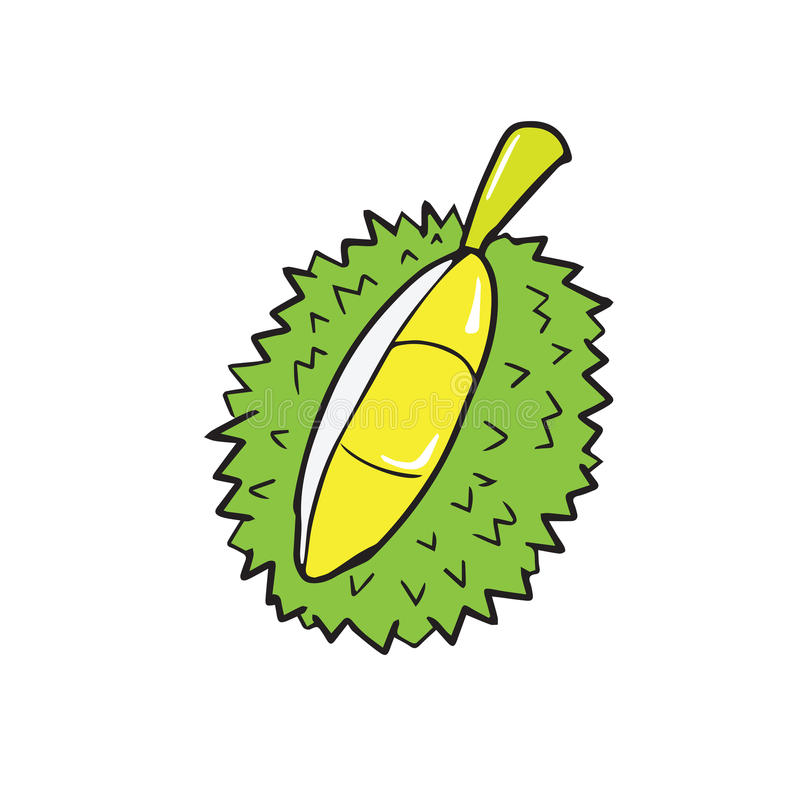Fruit thaï de durian illustration stock