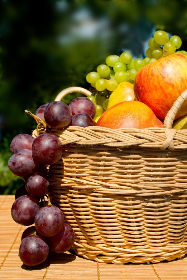 Fruit toujours de durée photographie stock libre de droits