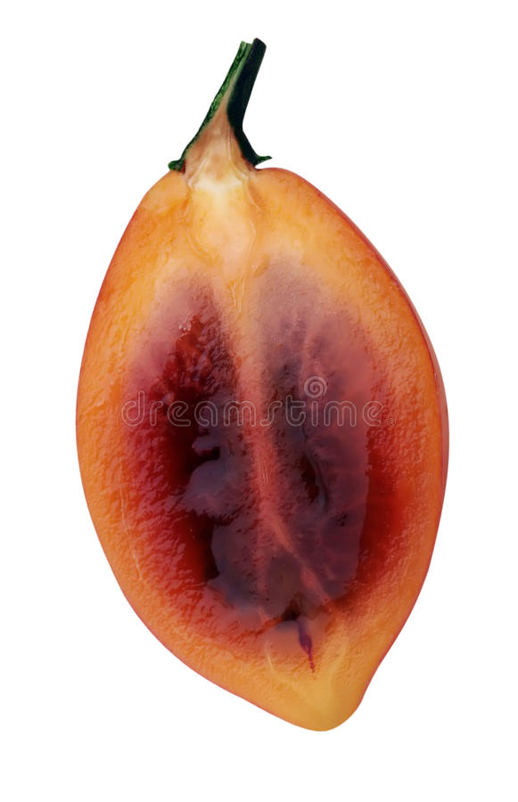 Fruit tropical photo stock