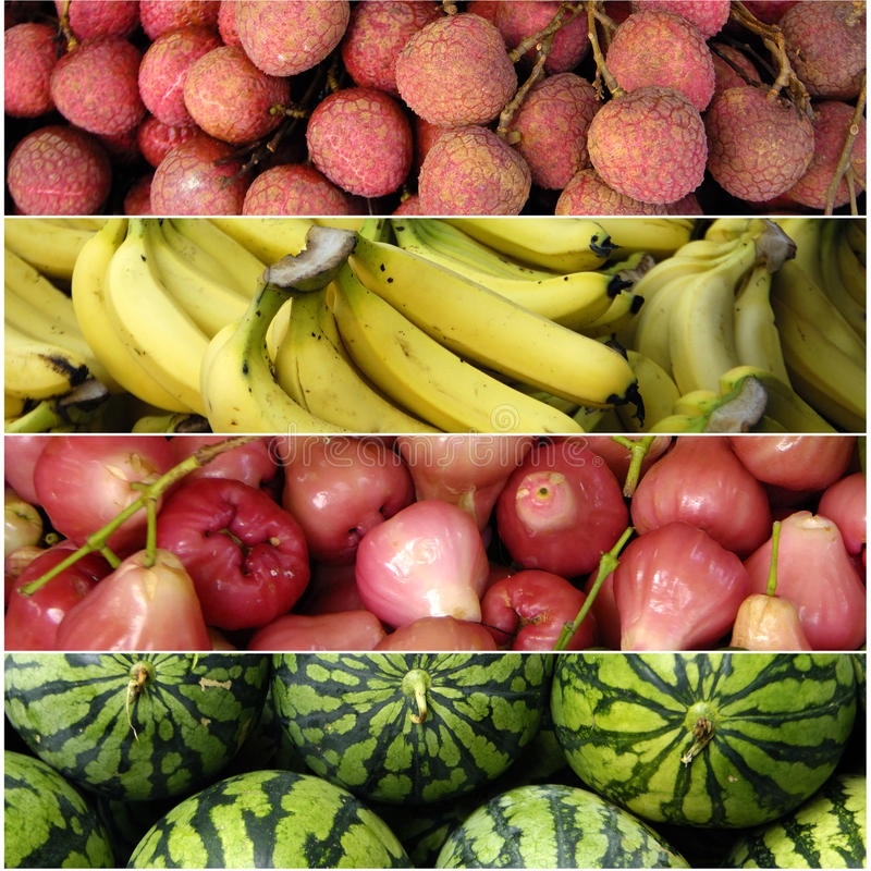 Fruit tropical image libre de droits