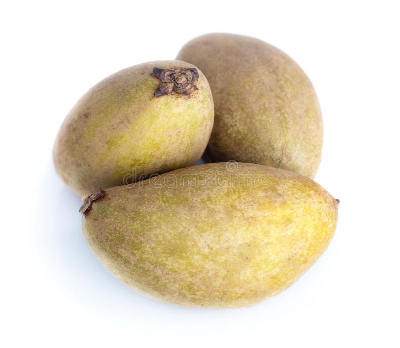 Fruit tropical - Chiku photos libres de droits