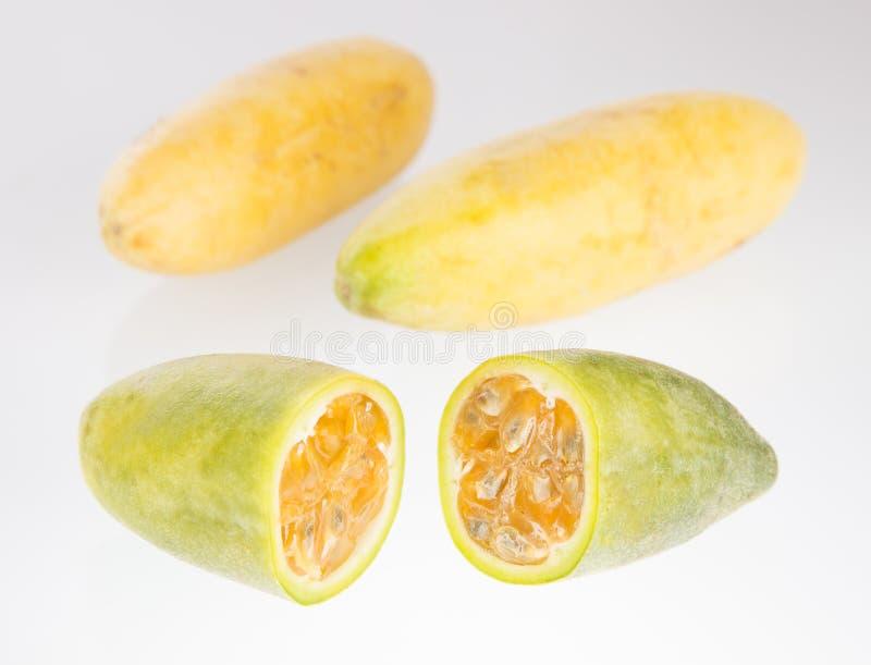 Fruit tropical de curuba - passiflore tripartite photographie stock libre de droits