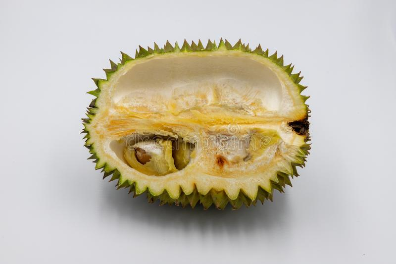 Fruit tropical de durian sur le fond blanc Roi des fruits Demi coupe de durian avec la graine Photo exotique de studio de fruit images libres de droits