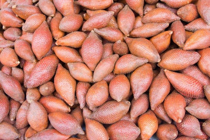 Fruit tropical de Zalacca photo libre de droits