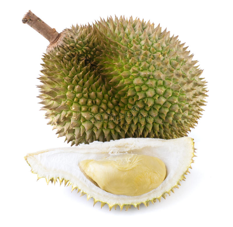 Fruit tropical - durian photographie stock