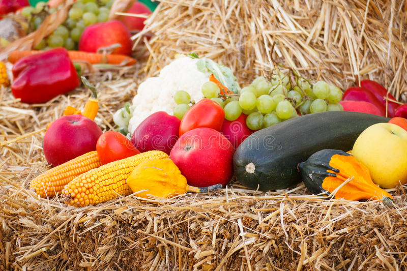 Fruit and vegetables on straw, agriculture on summer or autumn. Fresh fruits and vegetables lying on straw, concept of agriculture on summer or autumn stock image