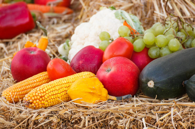 Fruit and vegetables on straw, agriculture on summer or autumn. Fresh fruits and vegetables lying on straw, concept of agriculture on summer or autumn royalty free stock photos