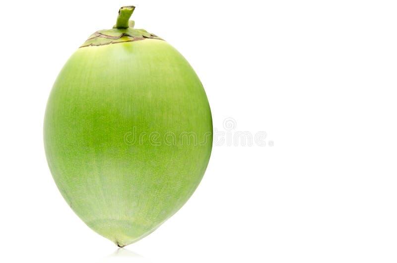 Fruit vert de noix de coco image libre de droits