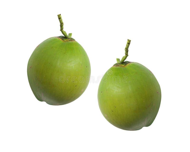 Fruit vert de noix de coco d'isolement sur le blanc image stock