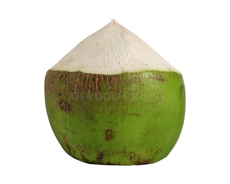 Fruit vert de noix de coco d'isolement sur le blanc photographie stock