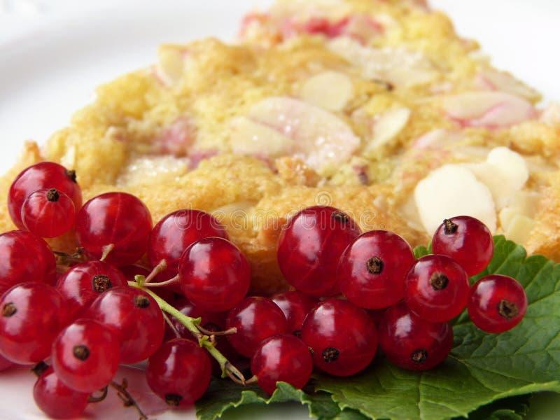 Fruit, Voedsel, Frutti Di Bosco, Amerikaanse veenbes stock afbeeldingen