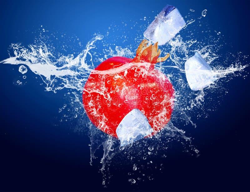 Fruit in water royalty-vrije stock fotografie