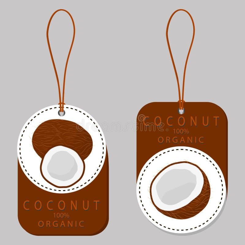 Fruit witte kokosnoot vector illustratie