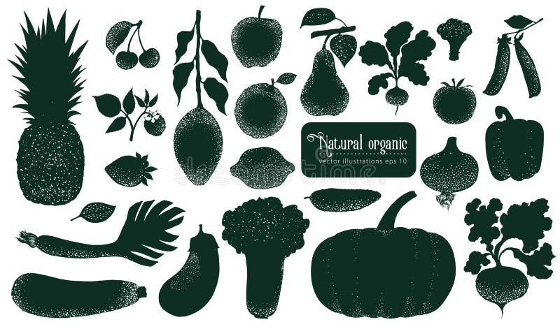 Fruita del vector y siluetas de las verduras Ejemplos del vintage Objetos dibujados mano de la naturaleza stock de ilustración