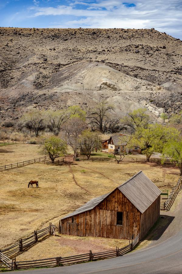 Fruita is currently the heart and administrative center of Capitol Reef National Park, Utah. Fruita was established in 1880 by a group of Mormons led by Nels stock image
