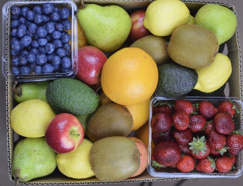 Fruitdoos royalty-vrije stock foto's