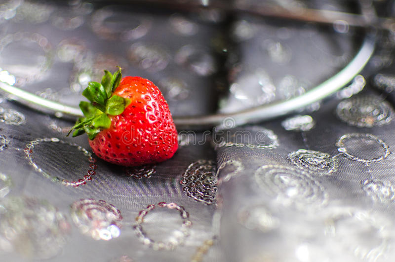 Fruitella arkivfoton