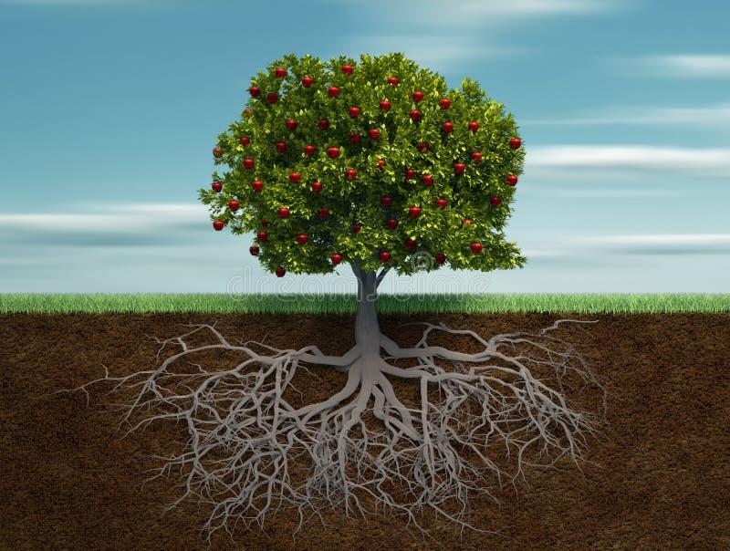 Download Fruiter stock illustration. Image of grass, different - 16697308