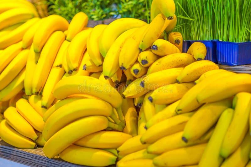 Fruitideeën Verscheidenheid van Verse Banaanvruchten Geplaatste Massa stock foto