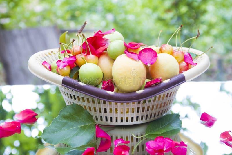 Fruitmand in aard stock foto