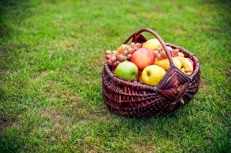 Fruitmand op het groene gras stock afbeeldingen