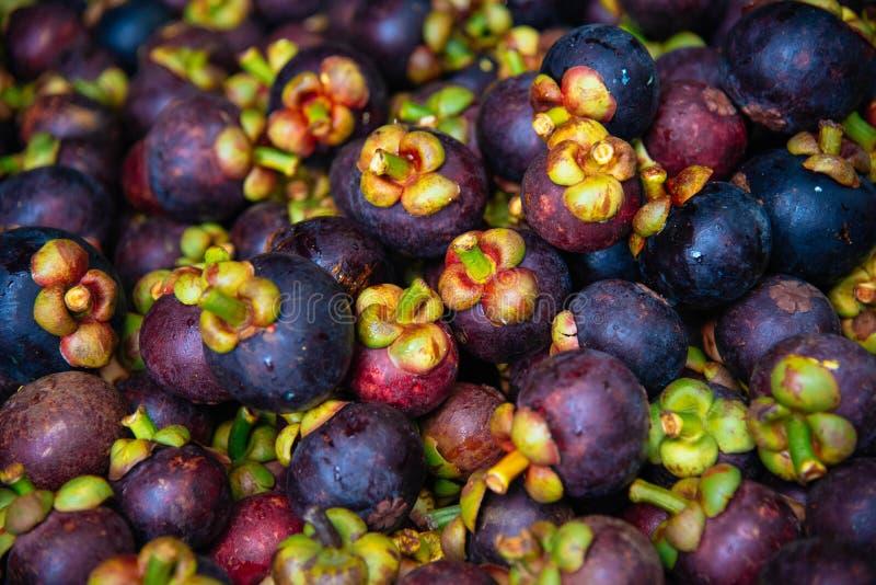 Fruitmangostan Thailand stock foto
