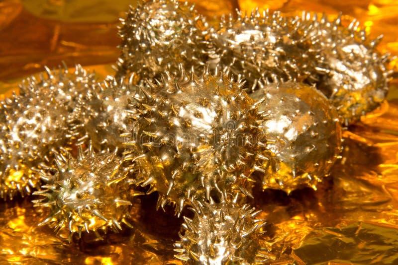Fruits épineux d'or de concombre photos libres de droits