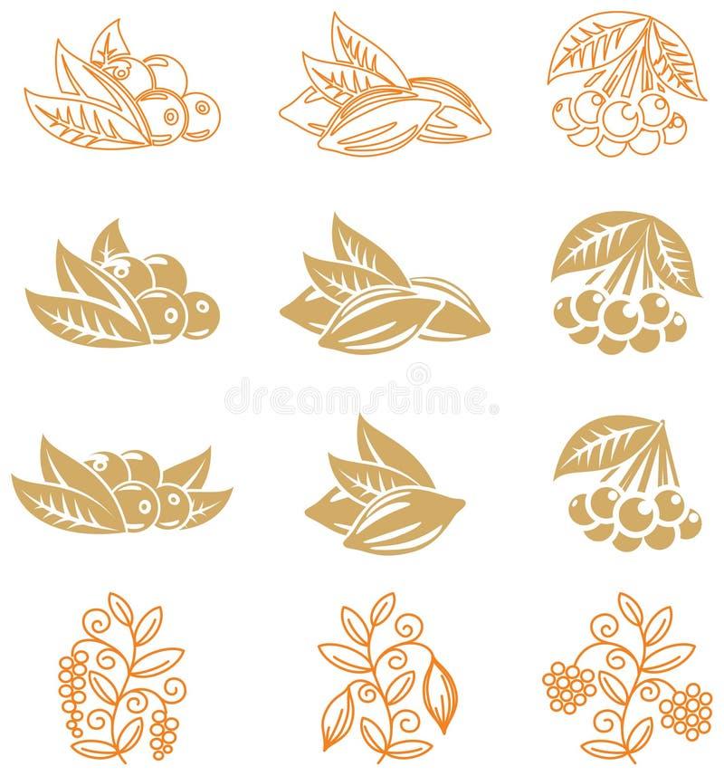 fruits иконы иллюстрация вектора