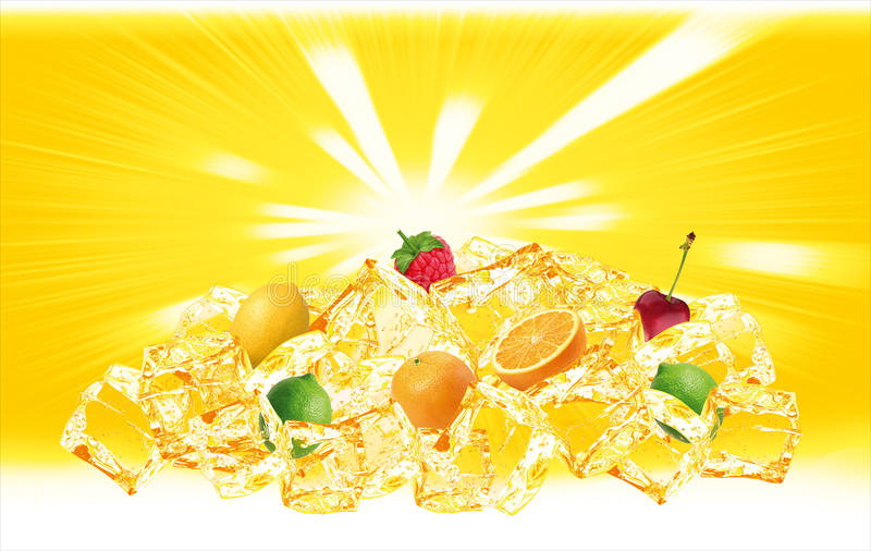 fruits помеец льда холма стоковые фотографии rf