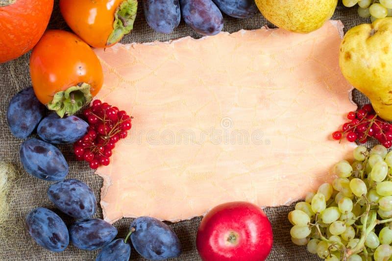 Fruits предпосылка стоковые изображения
