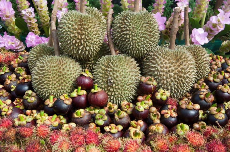 fruits тайско стоковое изображение rf